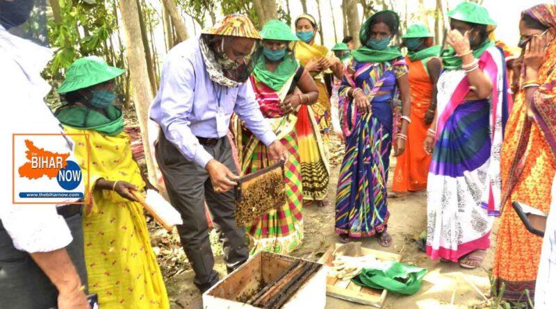 एनटीपीसी बाढ़ द्वारा 20 ग्रामीण महिलाओं को रोज़गार प्रशिक्षण